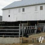 Frank Hoover Barn Before