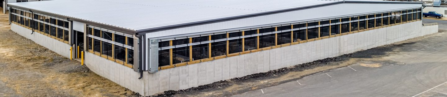 New Holland Sales Stables